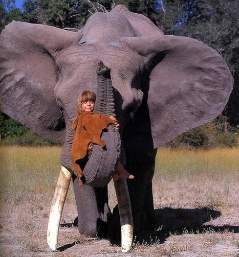 Young girl who's best friends with African wildlife | News round the Globe especially unacceptable behaviour | Scoop.it