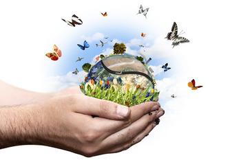 Innovazione: Enel-Crui, bando Energie per la ricerca | Agevolazioni, Investimenti, Sviluppo | Scoop.it