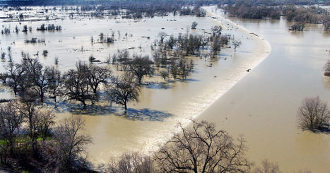 California Floods Its Fields to Keep Its Cities From Flooding | Organic Farming | Scoop.it
