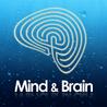 Psicologia, neuropsicologia e neuroscienze