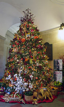 NCDA&CS News Release: State Capitol highlighting agriculture during holidays | North Carolina Agriculture | Scoop.it