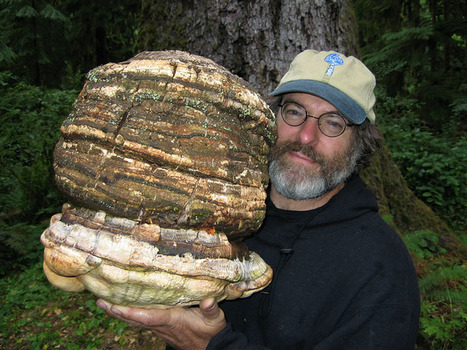 He Holds The Patent That Could DESTROY Monsanto And Change The World! | SMART INNOVATIONS | Scoop.it