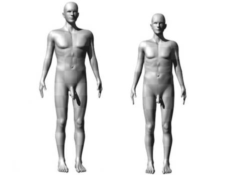 Size really does matter: Homo sapiens' 'larger than necessary' penis may have evolved through natural selection by prehistoric women | A Sense of the Ridiculous | Scoop.it