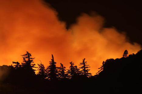 Fighting wildfires with science - CBS News   Science Education   Scoop.it