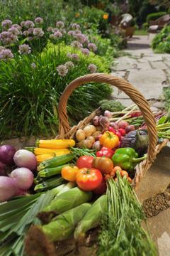 Soul Food – The Subtle Ayurvedic Techniques for Preparing a Meal | Maharishi Ayurveda MAPI | Ayurveda en voeding | Scoop.it