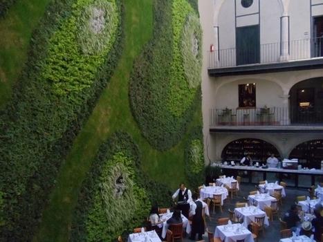Muros verdes invaden la Ciudad de México   ideas verdes   Scoop.it