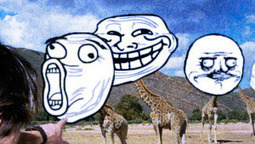 """Fffuuuuuuuu: The Internet anthropologist's field guide to """"rage faces""""   Media Archaeology   Scoop.it"""