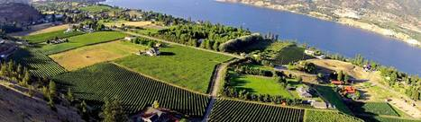 Is Western Canada's Okanagan Valley The Wine Region Of The Future? | In The Glass Wine and Spirits News | Scoop.it