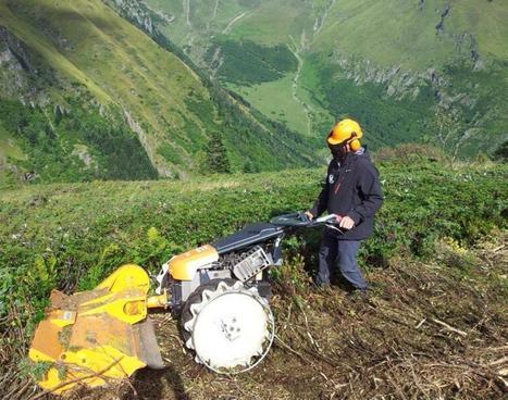 Dimanche, ouverture de la chasse aux gibiers en zone de montagne | Vallée d'Aure - Pyrénées | Scoop.it