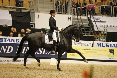Edward Gal and Glock's Undercover Win Opening 2014-15 Reem Acra FEI World Cup Dressage Grand Prix in Denmark | Fran Jurga: Equestrian Sport News | Scoop.it
