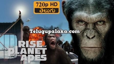 Irada full movie free download in hindi hdgolkes