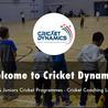 Cricket Dynamics