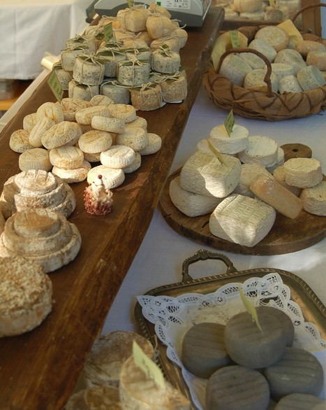 Formaggi d'Autore - Italian Cheese Festival and Market | Le Marche and Food | Scoop.it
