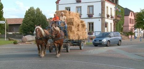 Ungersheim, le village alsacien qui expérimente la vie sans carbone   Curiosités planétaires   Scoop.it