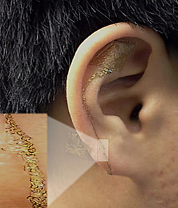 Novel Brain-Computer Interface on the Ear Lobe that Lasts for Weeks | Amazing Science | Scoop.it
