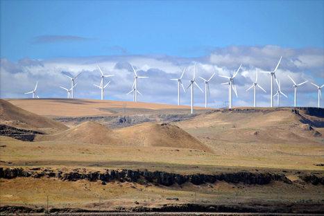 Quel avenir pour les énergies renouvelables aux États-Unis ? | Energies Renouvelables | Scoop.it