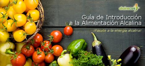 Guía rápida de introducción a la Alimentación Alkalina - Portal de Alkaline Care | Alimentación y Calidad de Vida | Scoop.it
