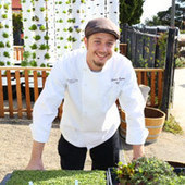 Montecito Urban Farms Serves Chefs - Santa Barbara Independent | Growing Food | Scoop.it
