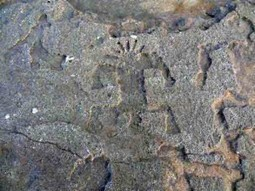 Elusive Rock Art Exposed in Hawaii - Archaeology Magazine | Historical Updates | Scoop.it