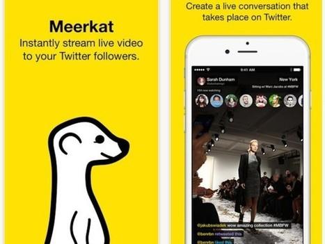 Meerkat : la nouvelle application de live-streaming vidéo qui cartonne sur Twitter - Blog du Modérateur | Social Network & Digital Marketing | Scoop.it