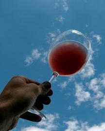 le Vin de mes Amis   Vins bio   Scoop.it