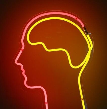 Cerebro, tecnologías educativas y estilos de aprendizaje, ¿mito o realidad? | Aprendiendoaenseñar | Scoop.it