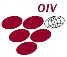 Prix OIV | Palmarès 2015 | World Wine Web | Scoop.it