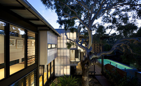 Sustainable Treehouse Architecture for a Contemporary Coastal Home | sustainable architecture | Scoop.it