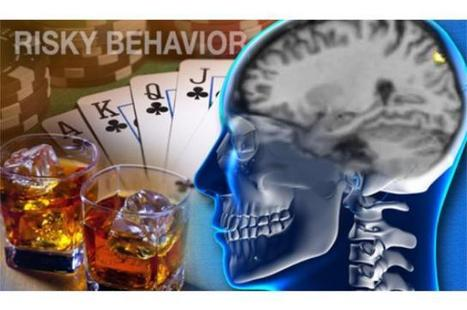 Brain structure could predict risky behavior | neuroscientistnews.com | Bounded Rationality and Beyond | Scoop.it