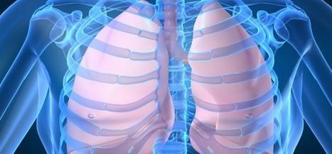 Exercice de respiration très simple pour nettoyer ses poumons   APMP NEWS   Scoop.it
