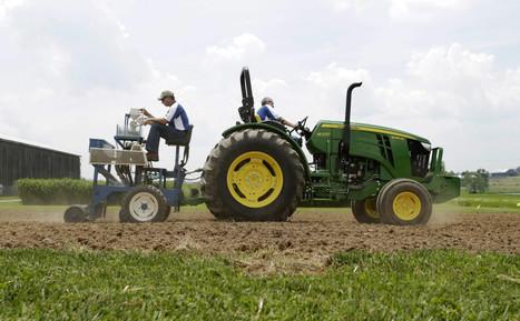 A tip for American farmers: Grow hemp, make money | biorenewable energy | Scoop.it