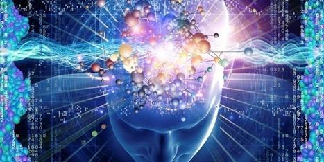 La conscience comme dissolution temporaire des réseaux fonctionnels du cerveau | Agence Science-Presse | Fonctionnement du cerveau & états de conscience avancés | Scoop.it