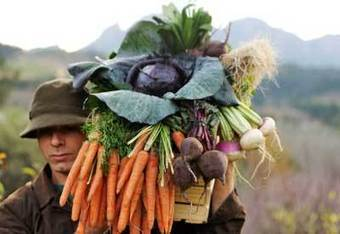 Permaculture: Local and Sustainable | Planet Natural | Permaculture Digest | Scoop.it
