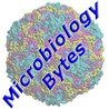 MicrobiologyBytes