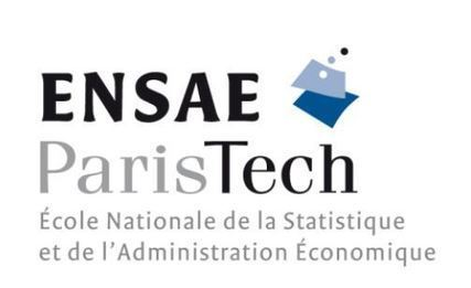 L'ENSAE ParisTech ouvre une filière Data Science | Data Science by Bluestone | Scoop.it