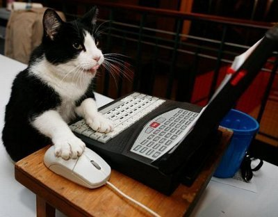 Consejos Para No Abandonar Tu Blog | Social Media e Innovación Tecnológica | Scoop.it