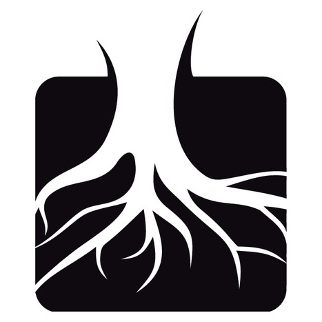 Rootstrikers | Open Government Daily | Scoop.it