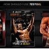 best bodybuilding supplements  Testo XL