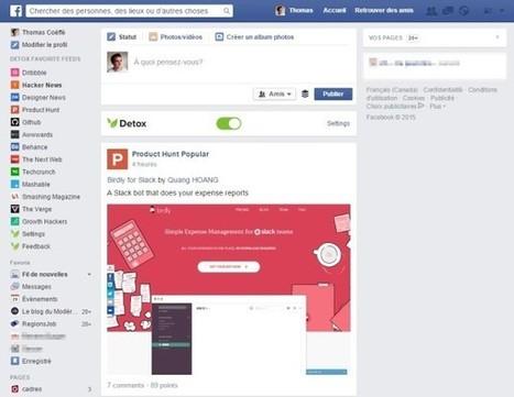 Detox for Facebook : pour transformer Facebook en outil de veille pour les professionnels du web | Réseaux et médias sociaux, veille, technique et outils | Scoop.it
