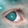Un oeil sur le net