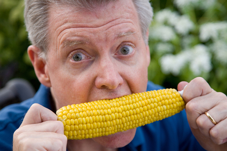 Why Not GMO? 5 Surprising Facts About Food's Biggest Controversy | real utopias | Scoop.it