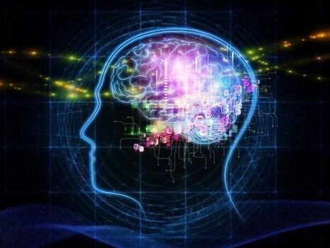 Peut-on vraiment prédire le comportement d'un consommateur ? - Innovation  - Le Monde.fr - IBM - Les clés de demain | Data Science by Bluestone | Scoop.it