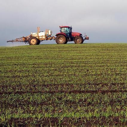 L'agroforesterie : l'alternative aux pesticides | Nouveaux comportements & accompagnement aux changements | Scoop.it