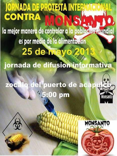 25 de Mayo Día Internacional Contra Monsanto | Los Rabiosos ... | Stop Monsanto | Scoop.it