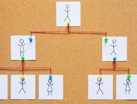 Can You Design an Organisation? | Management Plus | Scoop.it