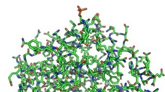 Inhibiting NLK in cancers with mutated PTEN could turn the cancer's strength against it | Art & Science | Scoop.it