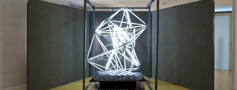 Think Art – Act Science December 2010 – December 2012 Touring exhibition « Swiss artists-in-labs | Art & Science | Scoop.it