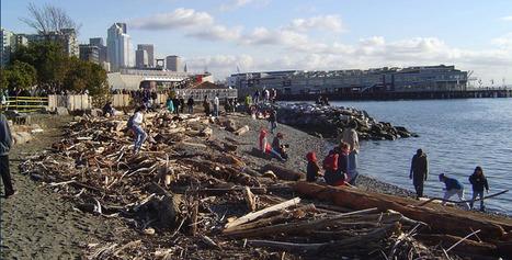 waterfrontseattle.org | | Territoires apprenants, sciences participatives, partages de savoirs | Scoop.it