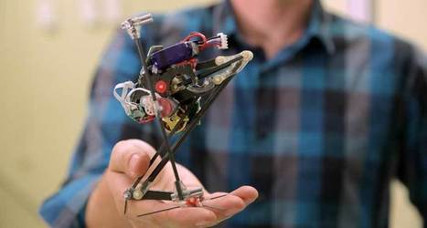 Zippy new jumping bot catches air again and again | Science And Wonder | Scoop.it